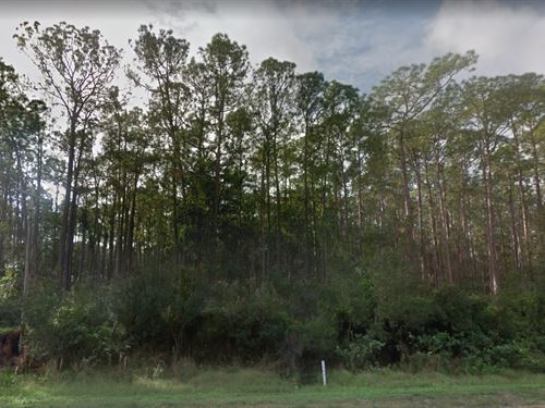 Polk County, Fl $8,500 Negotiable : Frostproof : Polk County : Florida