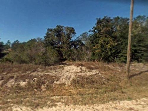 .32 Acres In Lehigh Acres, FL : Lehigh Acres : Lee County : Florida