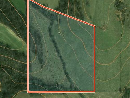 25 Acres of Private Retreat - Opti : Perryville : Bollinger County : Missouri
