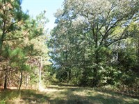 Myron Melamed Llc Tract, Lot B : Louisburg : Franklin County : North Carolina
