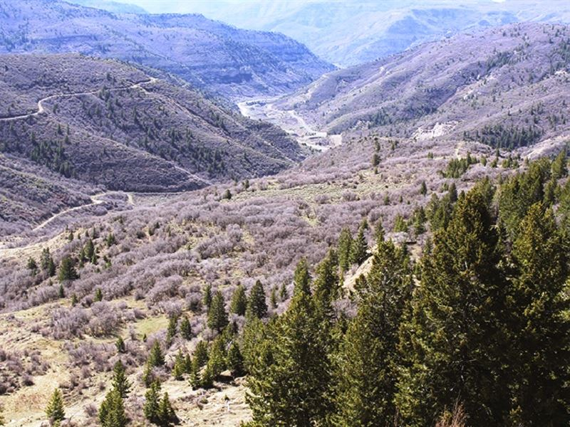 Colorado Land Auction - No Reserve : Loma : Garfield County : Colorado