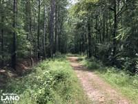 Paddock Lane Acreage : Thalmann : Glynn County : Georgia
