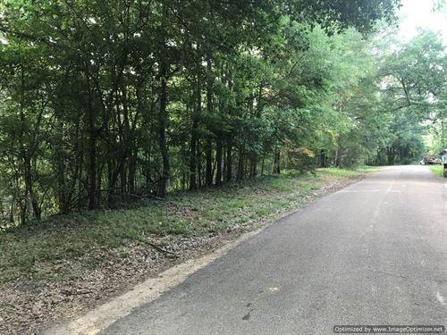 Scenic Weekend Getaway : Natchez : Adams County : Mississippi