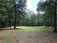 Beautiful 2.49 Acres 775881 : Chiefland : Levy County : Florida