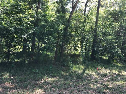 1 Acre Lot Near Boat Ramp 775736 : Chiefland : Levy County : Florida