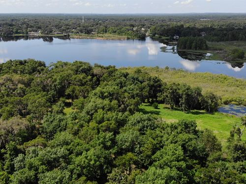 Lakefront Land On Chain Of Lakes : Inverness : Citrus County : Florida