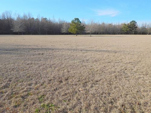 20 Acres Tom Lewis Road / Tylertown : Tylertown : Walthall County : Mississippi