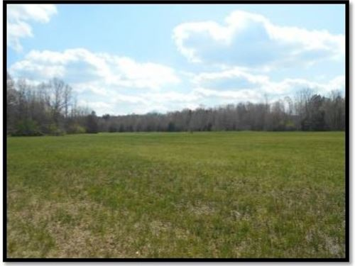 80 Acres In Panola County : Batesville : Panola County : Mississippi