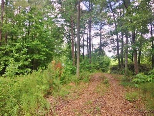 Land For Sale Western Pike County : McComb : Pike County : Mississippi