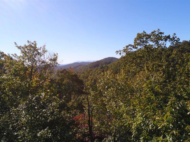 Private Mountain Estate : Landrum : Greenville County : South Carolina