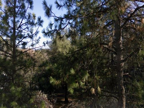 Tuolumne County, Ca $25,000 : Groveland : Tuolumne County : California