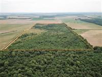 80 Acre Hunting Property Near Cla : Clarendon : Monroe County : Arkansas