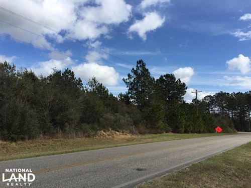 Baldwin County Rd 68 Homesite/Devel : Robertsdale : Baldwin County : Alabama