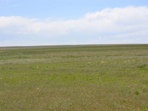 Briggsdale, Co Crp : Briggsdale : Weld County : Colorado