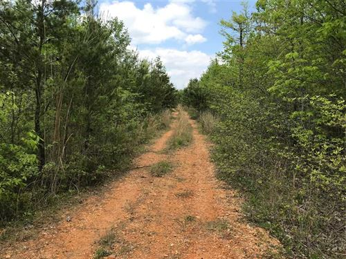 Price Reduction, 209.66 Acres of : Hohenwald : Lewis County : Tennessee