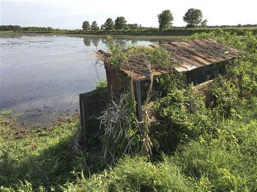 80 Acres, Precision Leveled Far : Weiner : Poinsett County : Arkansas