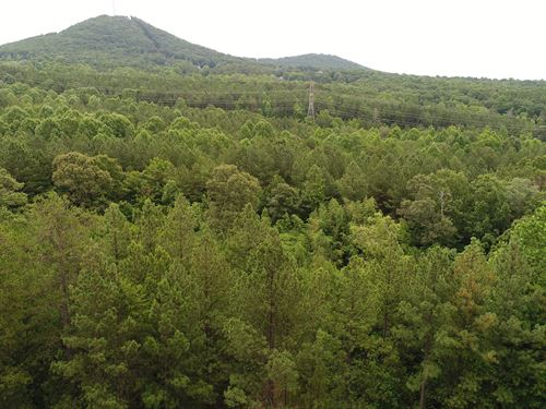 Stream, Wooded, Great Views : Six Mile : Pickens County : South Carolina