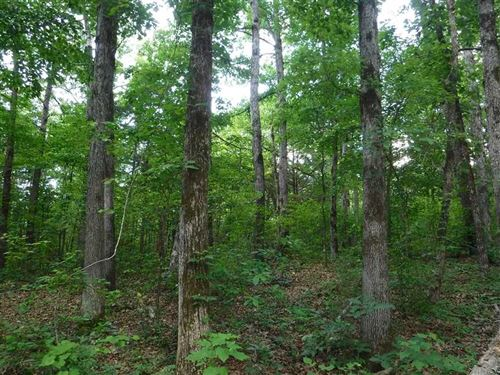 120 Acres of Recreational Timberla : Cleveland : Conway County : Arkansas