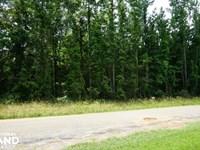 Akron Hunting And Future Developmen : Akron : Hale County : Alabama