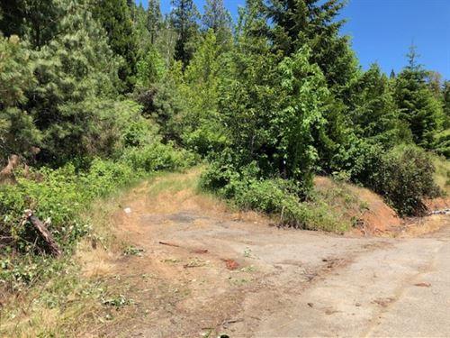 Starveout Creek : Azalea : Douglas County : Oregon