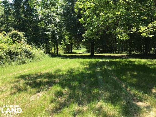 Dunbar Rd. Hunting Property : Newellton : Tensas Parish : Louisiana