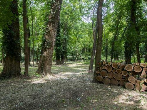 Lot For Sale in Carter County, Mis : Van Buren : Carter County : Missouri