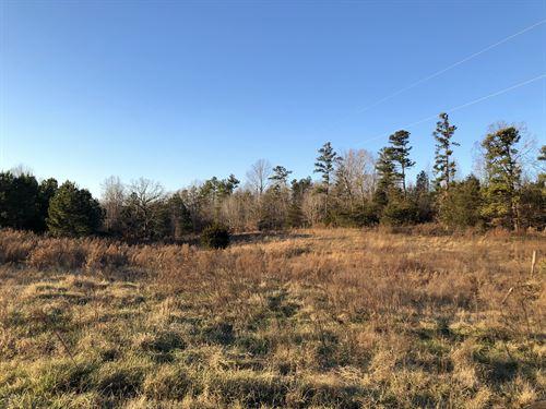 Spring Fed Pond, Pasture : Fair Play : Oconee County : South Carolina