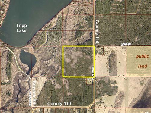 Hubbard, Badoura, 1393220, Nenw : Nevis : Hubbard County : Minnesota
