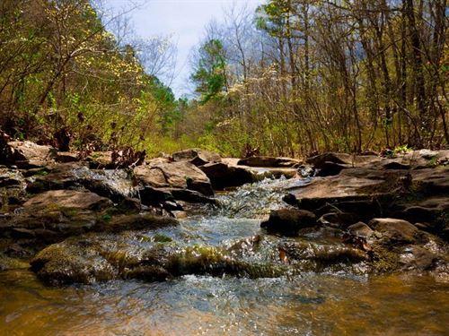 Beautiful Stream Property 191 : Wilburton : Latimer County : Oklahoma