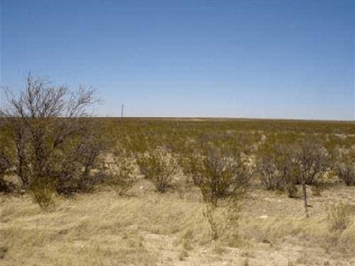 5.1 Acres In Fort Hancock, TX : Fort Hancock : Hudspeth County : Texas