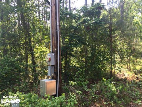 Old Barnwell Road Homesite And Timb : Lexington : South Carolina