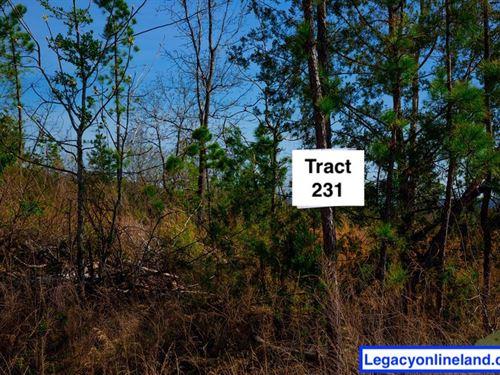 Beautiful View Escape 231 : Wilburton : Latimer County : Oklahoma