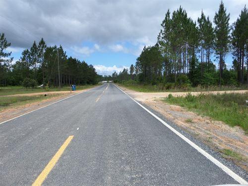 Homesite/Timberland Mt Pleasant Rd : Jesup : Wayne County : Georgia