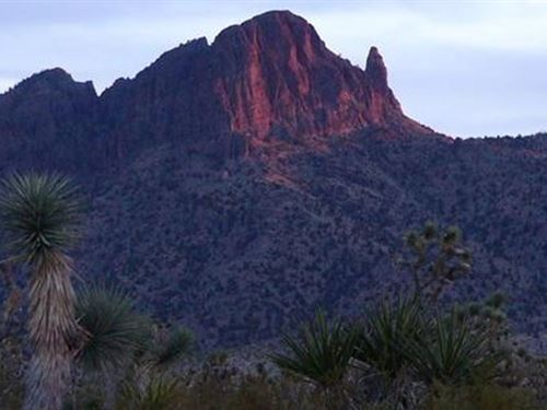20 Acres In Dolan Springs, AZ : Dolan Springs : Mohave County : Arizona