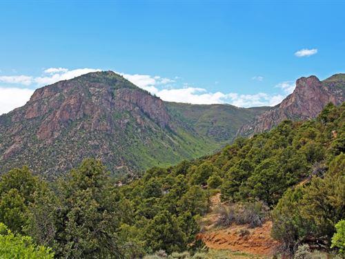 Bugling Elk Ranch : Gateway : Mesa County : Colorado