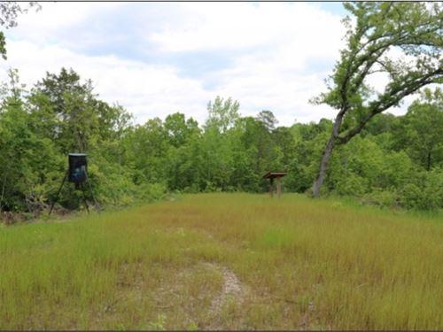 41 Acres In Noxubee County In Shuqu : Shuqualak : Noxubee County : Mississippi