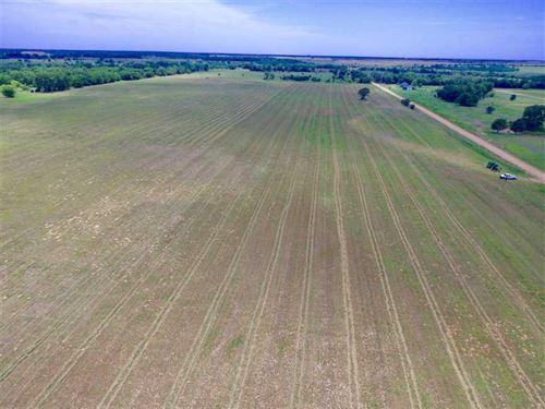 Just Listed, 80 Acres of Drylan : Attica : Harper County : Kansas
