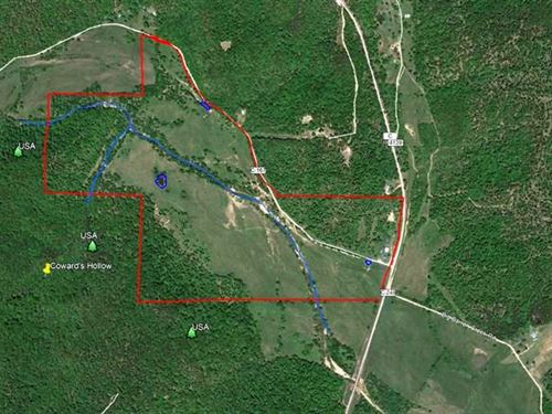 174 Acre Farm For Sale in Carter : Van Buren : Carter County : Missouri
