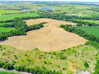 Farm Land For Sale in Falls County : Troy : Falls County : Texas