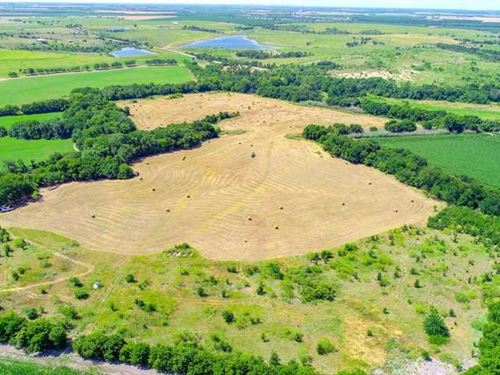 Bell County Land For Sale - 123 ac : Troy : Bell County : Texas
