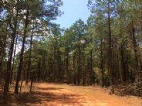 Gray - Overland Tract : Gray : Jones County : Georgia