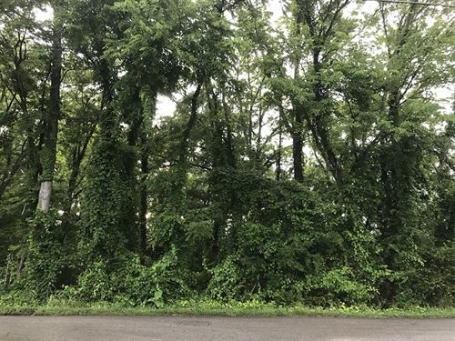 Residential Lot In Calhoun County : Eastaboga : Calhoun County : Alabama