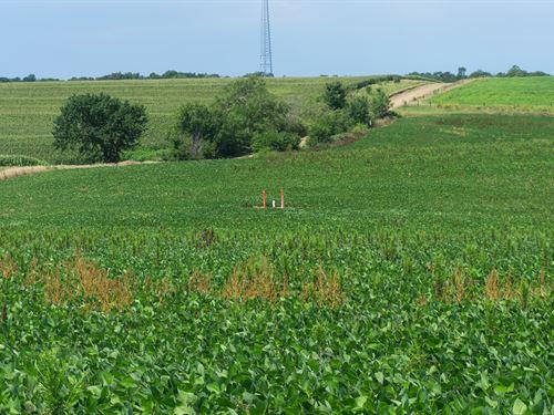 Ceresco Acreage Lot 4 : Ceresco : Saunders County : Nebraska