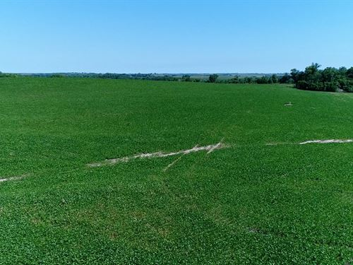 Ceresco Acreage Lot 5 : Ceresco : Saunders County : Nebraska