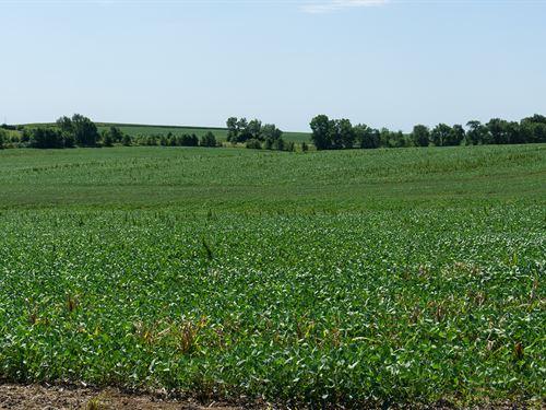 Ceresco Acreage Lot 6 : Ceresco : Saunders County : Nebraska