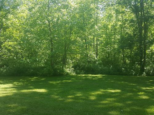 Beech Fork Rd - 7 Acres : Otway : Adams County : Ohio