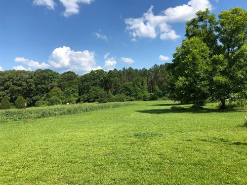Beautiful Country Land : Woodville : Wilkinson County : Mississippi