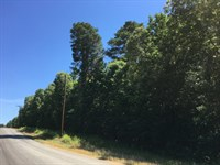 2Ac Lot Minutes From Msu Campus : Starkville : Oktibbeha County : Mississippi