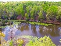 36 Acre Tract With Large Pond : Woodruff : Spartanburg County : South Carolina