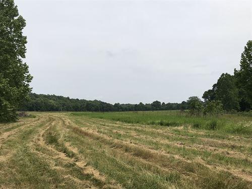 Janes Creek Farm : Mammoth Spring : Randolph County : Arkansas